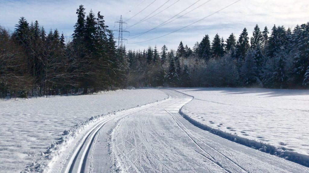 Piste de ski de fond classique et skating vers la forêt